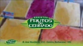 Frutos do Cerrado – Barbacena