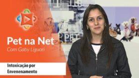 Pet na Net – Intoxicação por Envenenamento