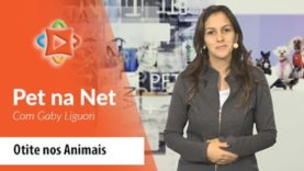 Pet na Net – Otite nos Animais