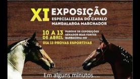 XI Exposição do cavalo Mangalarga Marchador